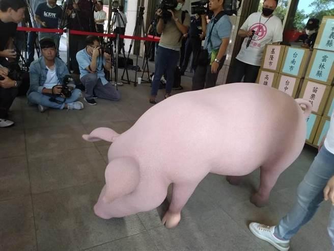 美豬開放憂食安  總統:台灣豬不怕競爭。本報資料照