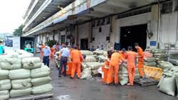 基隆關查獲進口貨櫃 疑自陸違法進口8000公斤蒜頭