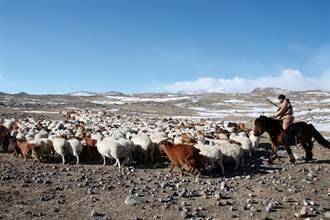 朱建銘:蒙古的圓夢之旅