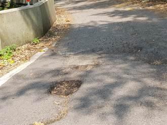 大湖南灣道破破爛爛 道路改善終於有譜