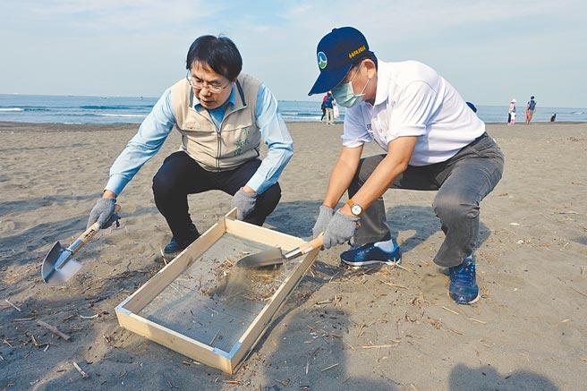 台南市長黃偉哲(左)、市府環保局長謝世傑(右)利用細密篩網清除沙中的廢棄物屑。(洪榮志攝)