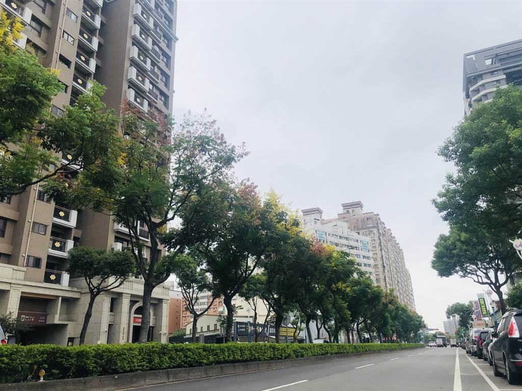中壢體育園區主要道路的龍慈路,未來打通至台66線可接國道。(台灣房屋提供)
