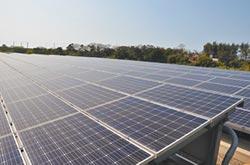 成本低裝設快 企業最愛太陽能