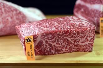 獨》一個銅板嗑日本和牛係金A!鐵火燒肉「殺」進微風北車站