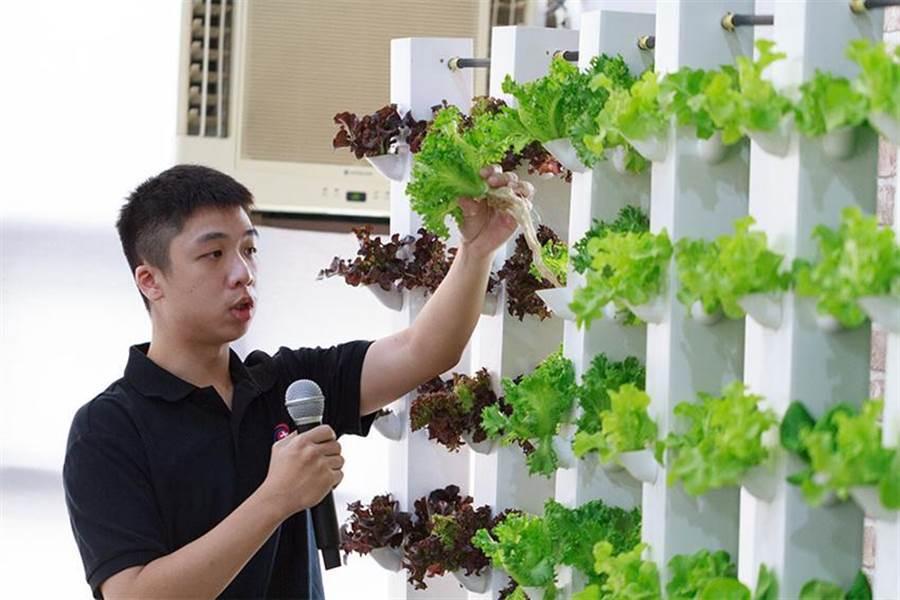 電漿科技研究中心研究助理呂灌恒與研究夥伴,將大氣電漿與氣霧栽培結合,讓農業科技邁前一大步。圖/逢甲大學提供