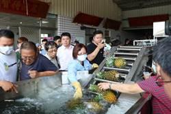 農試所推鳳梨產業智能化技術 省時省人力農民有興趣