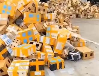 千隻毛孩裝進快遞箱被拒收 3天無人理集體死亡影片曝光