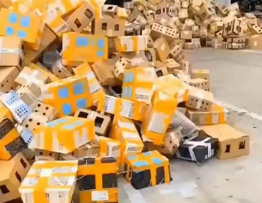 千隻毛小孩被裝進快遞箱中運送,豈料卻遭拒收而被滯留無人理(圖翻攝自/微博)