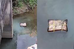 高雄燕巢橋下驚見「屍塊」漂浮?一打撈 網全看傻