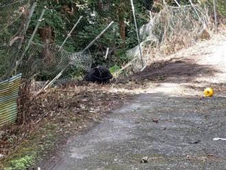 沒事了!受困黑熊獲救 狀況良好擇日野放