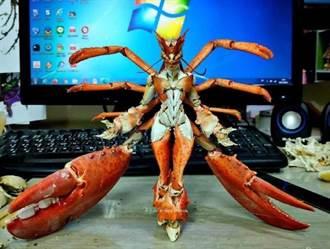 老饕大啖龍蝦完的正確使用方式曝光 網:最美的鋼彈女神