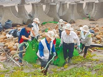 今年颱風少 海岸垃圾減近4成