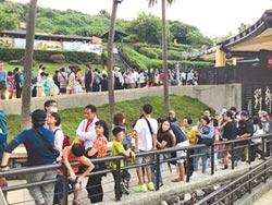 野柳夜訪女王爆棚3600人  遊客進不去怒報警
