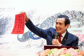 王美花稱RCEP對台灣「影響不大」 藍委:還不都是馬英九