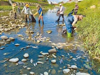 魚群暴斃求解 水盒子監控水質