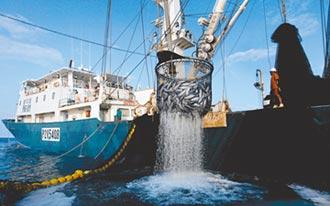 漁業署再裝死 500億就泡湯