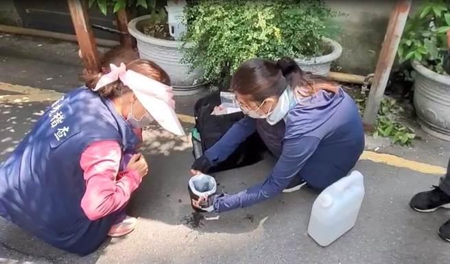 桃園市環保局在桃園、龜山、蘆竹設置病媒蚊誘卵桶,其中發現桃園區有3里風險較高。(賴佑維攝)