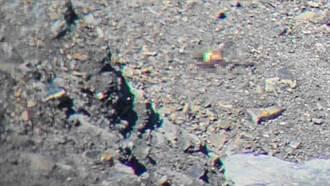 男子攀中央尖山滑落「死亡稜線」 失聯16日尋獲遺體