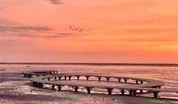 新竹拍照景點再加一!香山濕地賞蟹步道 超美夕陽與潮汐 美景不輸高美濕地