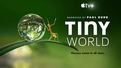 Apple TV+全新紀錄片《你不知道的小小世界》上架囉