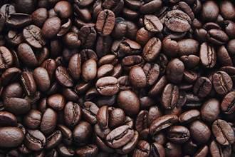 咖啡豆撐起百萬增收 助雲南村落走出特色脫貧路