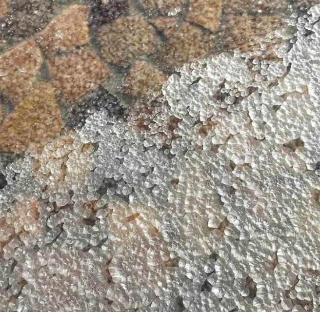 從結晶池上的薄膜撈起的,便是珍貴的「鹽之花」。(圖/高靜玉攝)