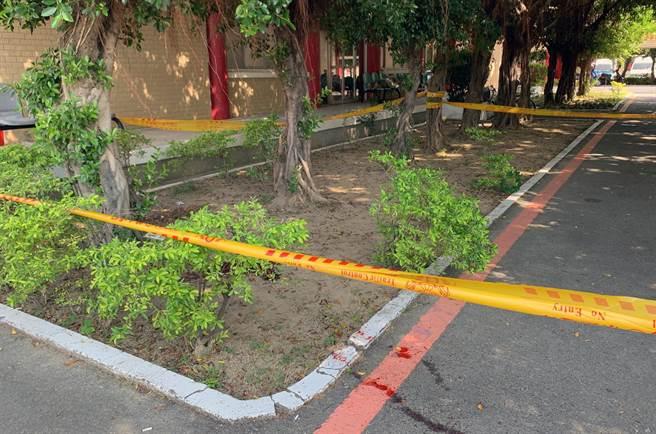 殯葬業者方仁毅在台南市殯儀館明德廳旁走道的榕樹下,被人近距離開1槍打中頭部,地上血跡斑斑。(讀者提供/洪榮志台南傳真)