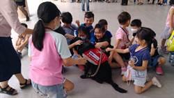 導盲犬進校園當生命老師 學童感恩體驗