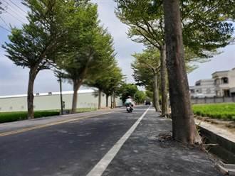 雲林縣申請前瞻道路改善工程 縣府獲零頭但4鄉鎮破億