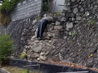 石牆裂縫硬塞半身男屍 情境詭異走近一看驚呆