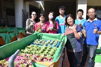 竹南國中 打造魚菜共生開心小農場