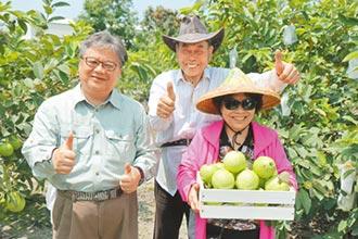 百年福壽農糧共好 推展循環經濟
