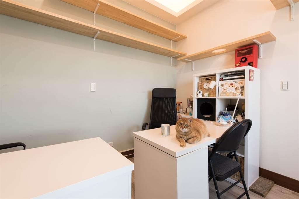 嚕嚕喜歡待在志銘身邊,就時常留在志銘與狸貓的工作空間。