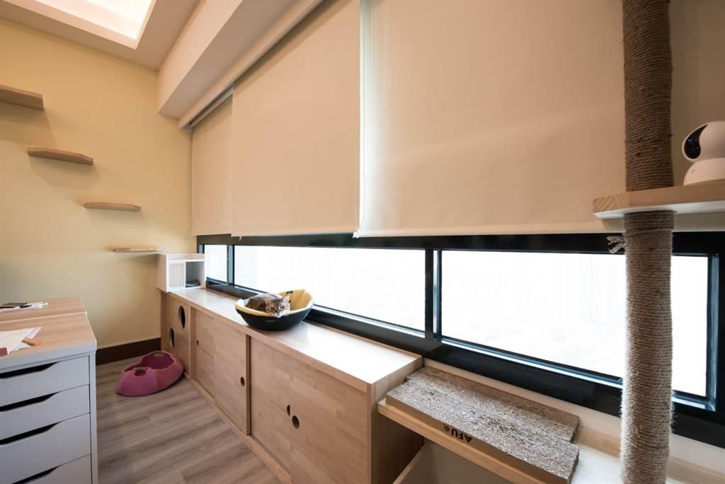 在新後宮中訂做的新家具,就是這座與窗台齊高的貓櫃,貓咪們可以在上面休息和曬太陽,下方可收納、讓貓咪窩藏。