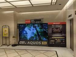 夏普推全球最大8K螢幕 下訂要等兩個月