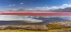 血紅湖泊驚見最狂生物 地球上「免吸氧氣」活35億年