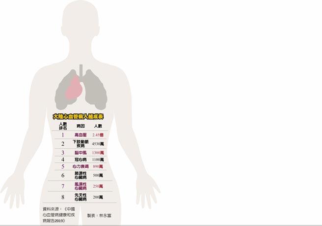 大陸心血管病人組成表