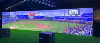 台灣NTT打造超逼真12K看球體驗 把桃園棒球場賽況直送眼前