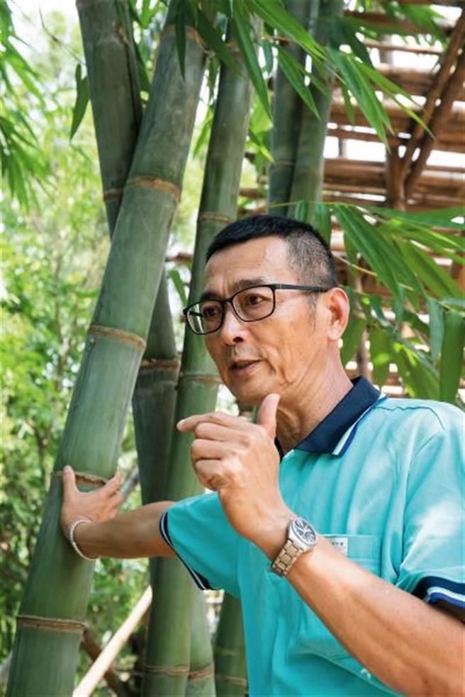 竹藝師張永旺將自家土地規劃成「百竹園」,在此種植、研究,實踐自己的竹子夢。(圖/林旻萱)