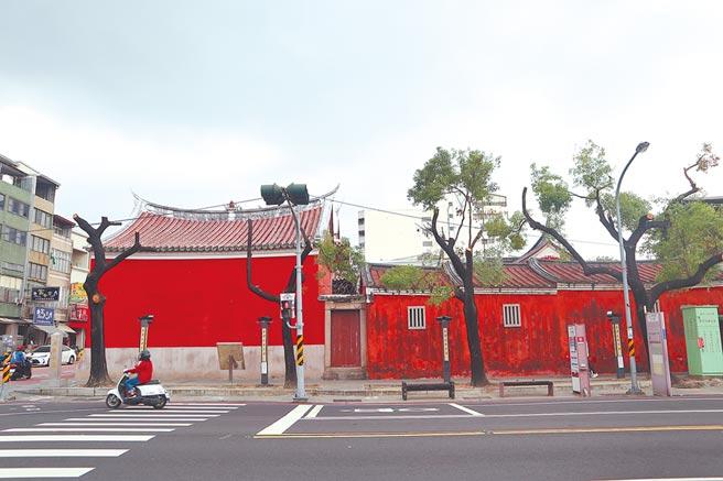 國定古蹟台南「祀典武廟」前,有多株樟樹慘遭「斷頭」。(李宜杰攝)