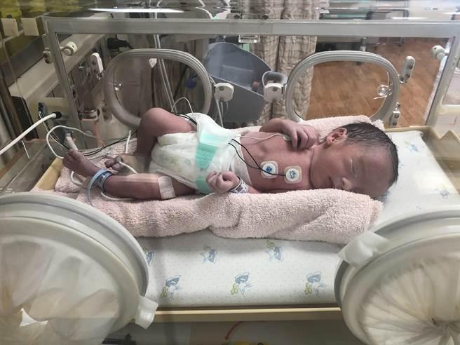 童綜合醫院第二位國慶寶寶。(童綜合提供/陳淑娥台中傳真)
