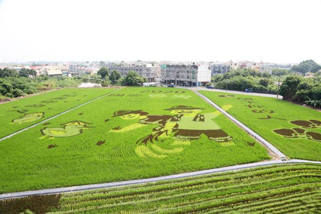 台南市是全台農業重鎮,目前有3個休閒農業區,農委會主委陳吉仲日前走訪後壁無米樂社區、彩繪稻田,並允補助發展農業專區的相關經費。(台南市政府農業局提供/莊曜聰台南傳真)