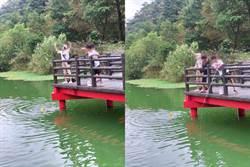 宜蘭望龍埤變釣魚場? 阿桑帶2小釣鯉魚 網怒轟:秀下限
