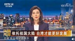 求和說惹議 李紅返央視主播台