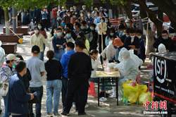 青島採樣307萬人未發現新確診者