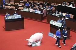 國民黨杯葛蘇貞昌報告 林為洲:不道歉別想上台