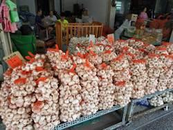 蒜頭1台斤200元卡關 農曆年後採收可望降價