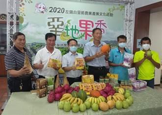 台南左鎮不只有芒果跟化石 白堊節農特產市集好買好逛
