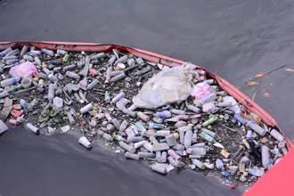 惡臭「漂漂河」牲畜屍體放水流 花蓮每年攔截百公噸溪流垃圾