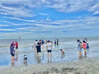 大安濱海豪華露營區爆紅 獲環境教育設施場所認證